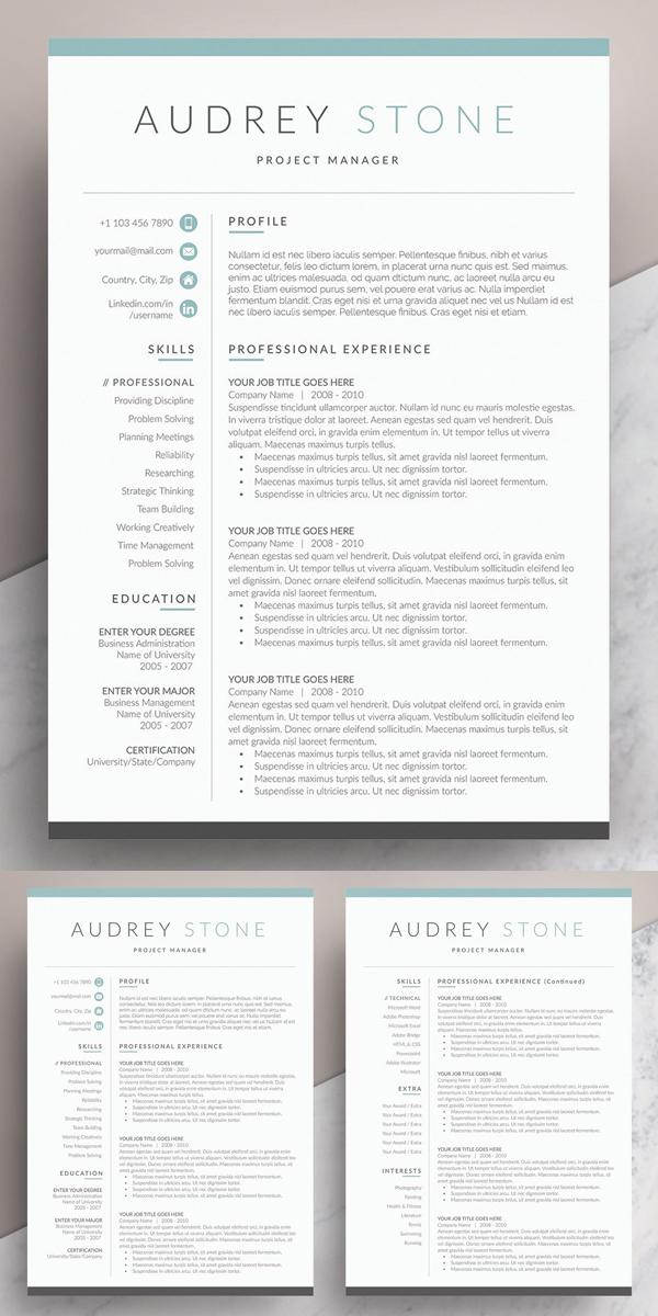 Clean Word Resume