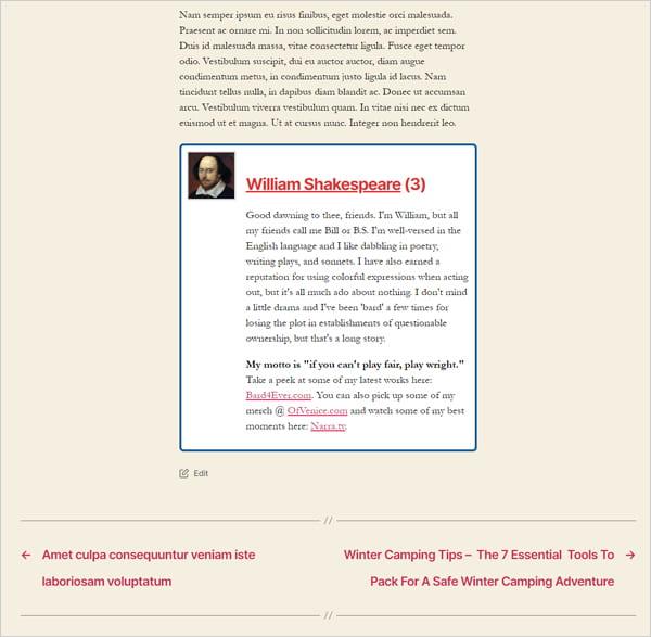 Twenty Twenty theme with a single author bio box displayed.