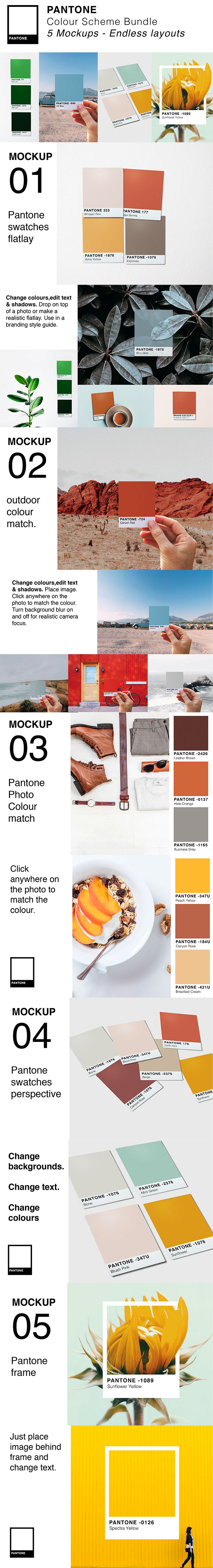 Pantone Colour Swatch Mockups for Premium Members