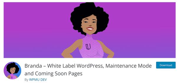 Screenshot of Branda from wordpress.org